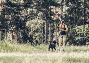 8 vinkkiä kesän luontoretkiin koiran kanssa