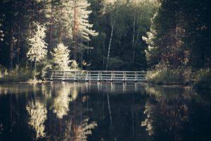 Read more about the article Kiljahduksia ja kalastusta, eli kokemuksia telttailusta Evolla