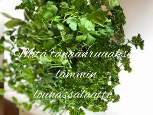 Viikon ruokavinkki – lämmin lounassalaatti