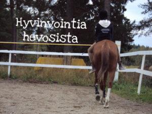 Hyvinvointia hevosista