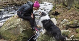 Read more about the article Seitsemisen kansallispuisto